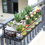 balcones con cactus, soporte para plantas en balcones